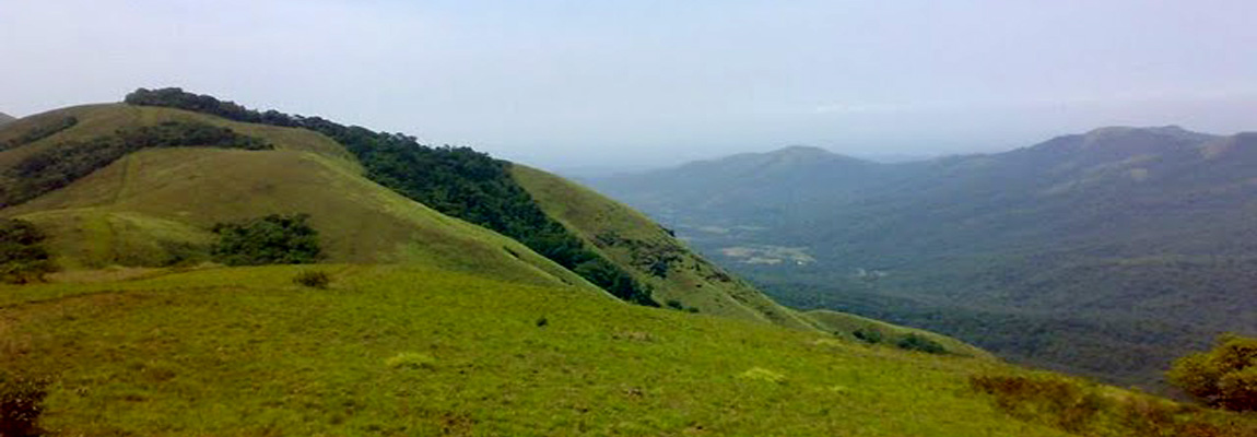 hill station my wayanad